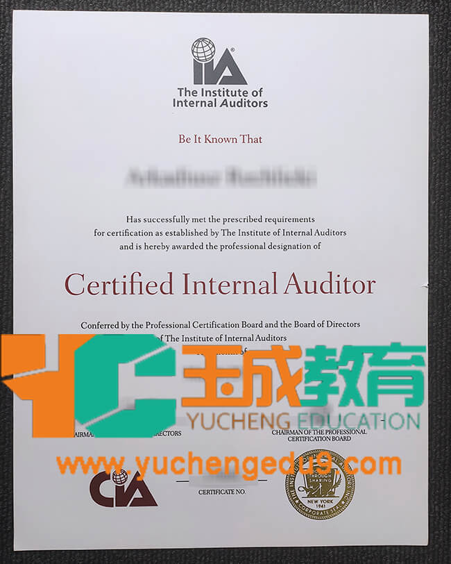 Institute of Internal Auditors certificate