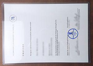 Humboldt University of Berlin diploma