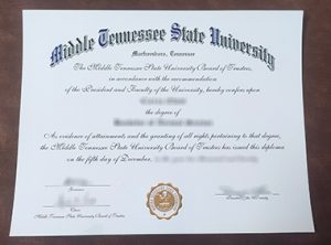Middle Tennessee State University degree