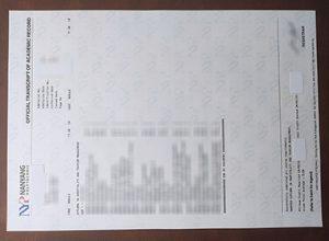 Nanyang Polytechnic transcript