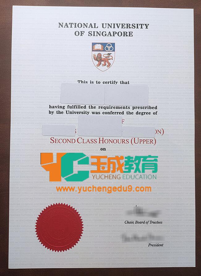 National University of Singapore degree