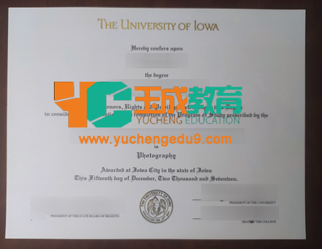 University of Iowa degree