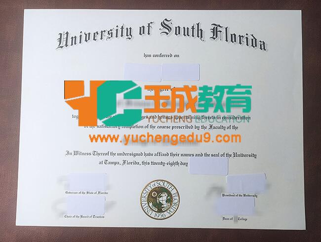University of South Florida degree