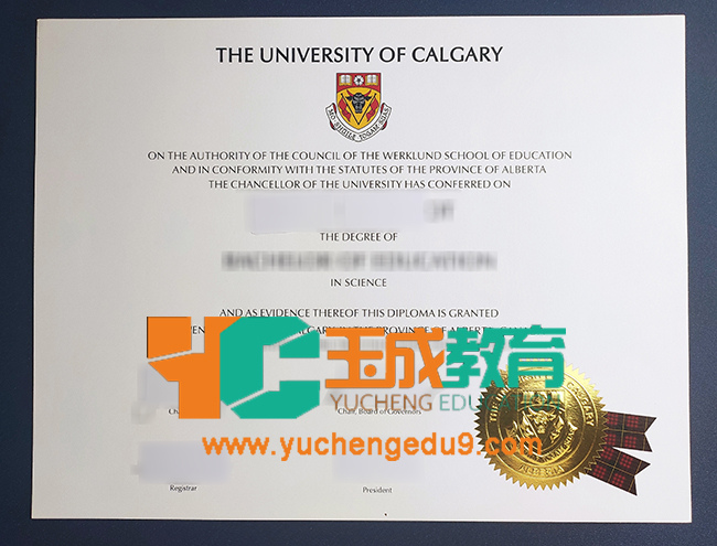 University of Calgary degree