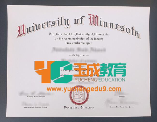 University of Minnesota degree