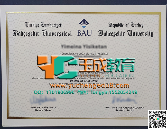 巴切谢希尔大学理学学士学位 Bahçeşehir University degree of bachelor of science