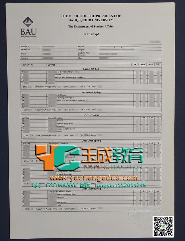 巴切谢希尔大学成绩单 Bahçeşehir University transcript