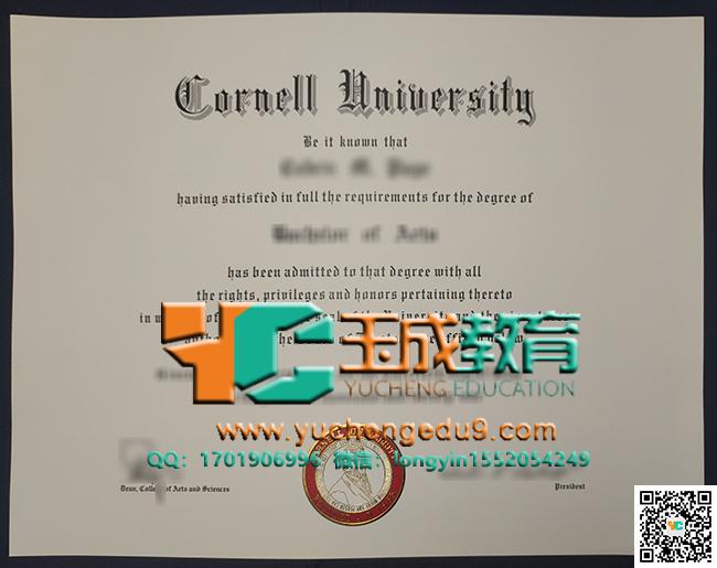 康奈尔大学文学士学位 Cornell University degree of Bachelor of Arts