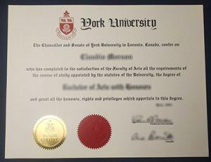 Old York University degree