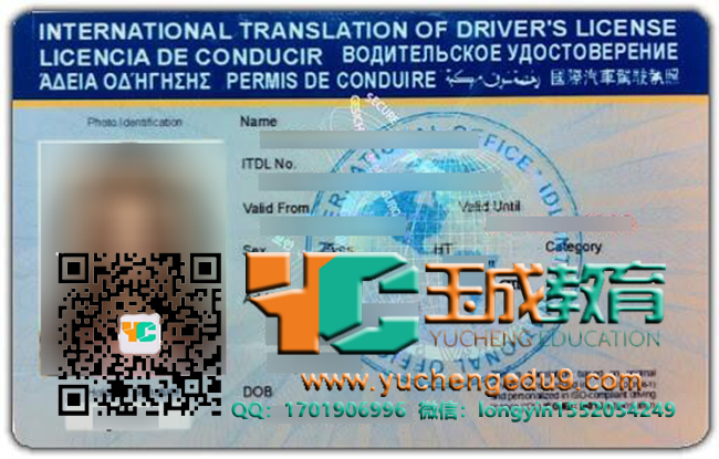 international driver's license 国际驾照